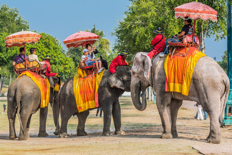 Toeristen die olifanten Ayutthaya Bangkok Thailand berijden royalty-vrije stock afbeelding