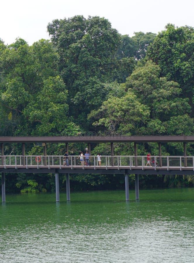 Toeristen die op houten brug lopen stock fotografie