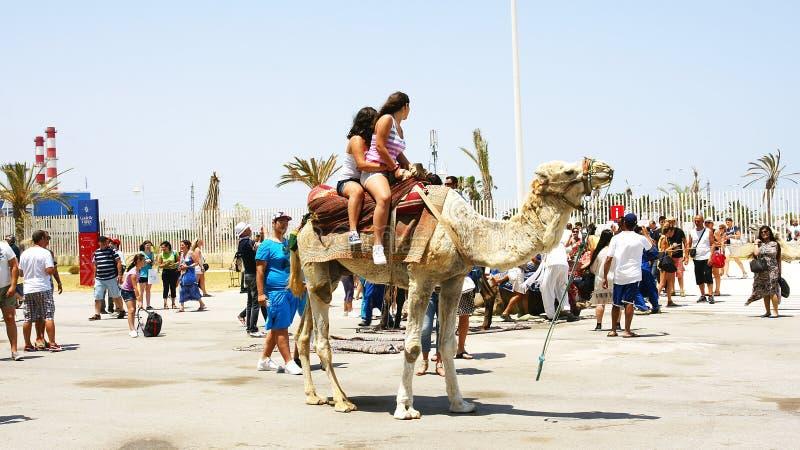 Toeristen die op kamelen in de haven van La Goulette lopen royalty-vrije stock afbeeldingen