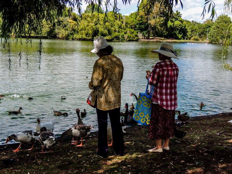 Toeristen die touristy materiaal terwijl uit en ongeveer in Nieuw Zeeland doen stock afbeeldingen