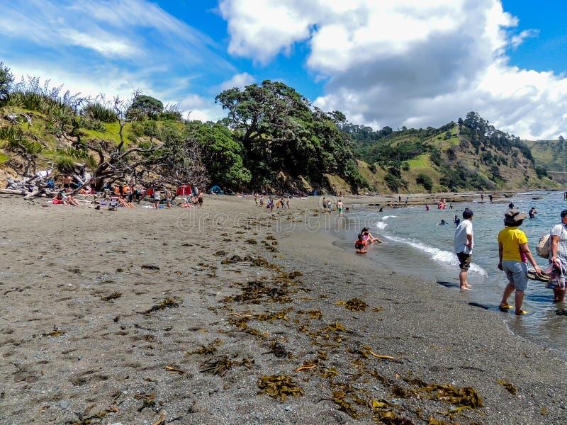 Toeristen die touristy materiaal terwijl uit en ongeveer in Nieuw Zeeland doen royalty-vrije stock foto
