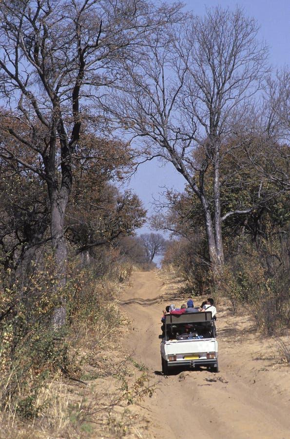 Toeristen in een jeep op een Afrikaanse safari, Botswana stock afbeeldingen