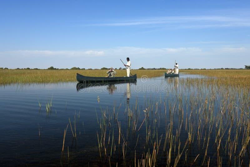 Toeristen in mokoro - Okavango-Delta - Botswana stock foto