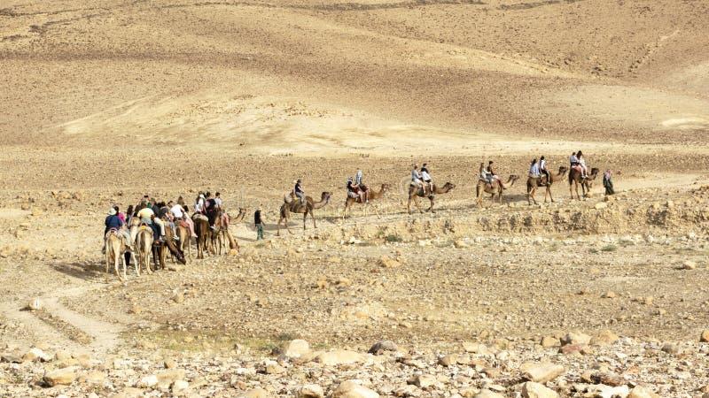 Toeristen op een Reis van de Kameelrit van de Judaean-Woestijn royalty-vrije stock afbeelding