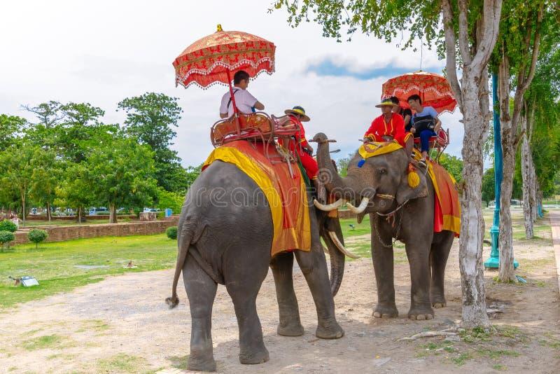 Toeristen op een reis van de ritolifant van de oude stad bij Wat Yai-chaimongkol stock foto