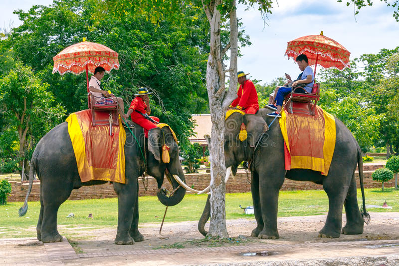 Toeristen op een reis van de ritolifant van de oude stad bij Wat Yai-chaimongkol in Ayutthaya, Thailand stock fotografie