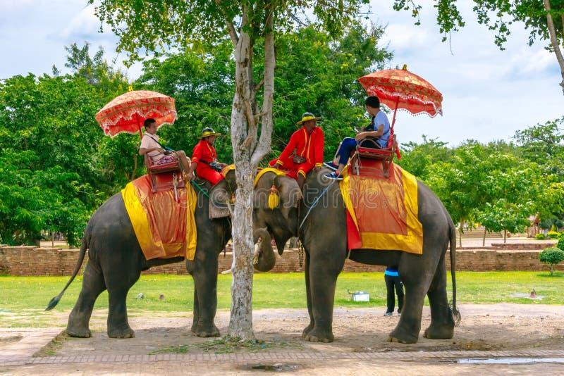 Toeristen op een reis van de ritolifant van de oude stad bij Wat Yai-chaimongkol in Ayutthaya, Thailand royalty-vrije stock afbeeldingen