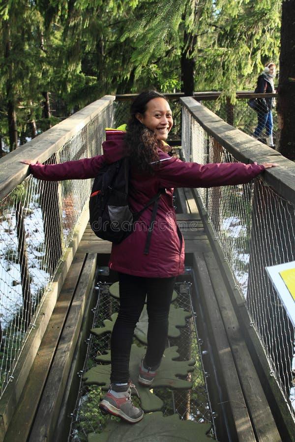 Toeristen op het Vooruitzicht van Lipno van sleepbomen stock fotografie