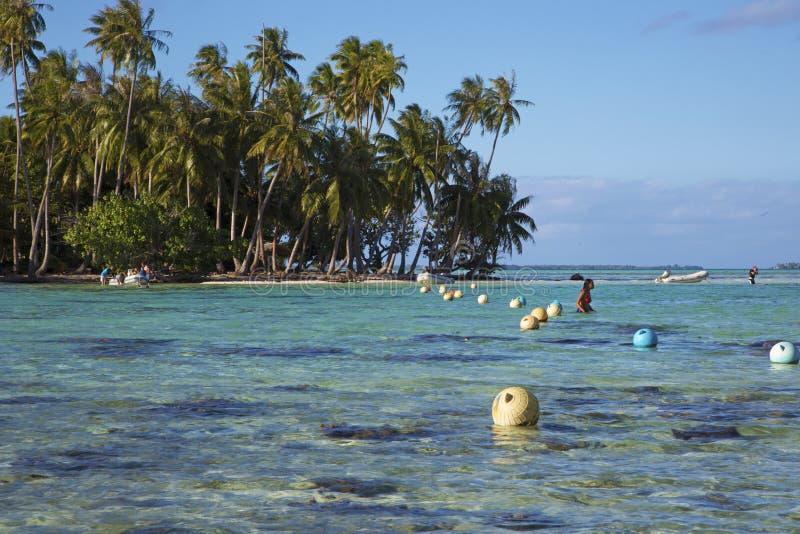 Toeristen in Tahaa-lagune royalty-vrije stock afbeeldingen