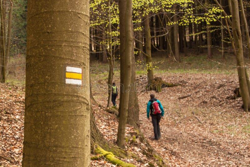 Toeristentekens in de Tsjechische Republiek Wandelingssleep door het hout Vader en zijn zes maanden zoete dochter die de kaart in stock foto's