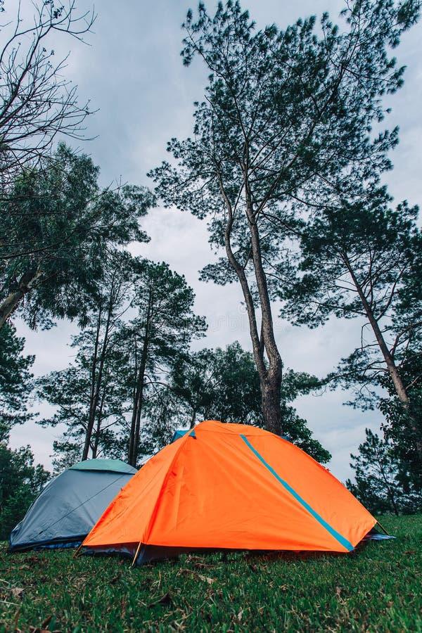 Toeristentent die in bergen kamperen royalty-vrije stock afbeelding