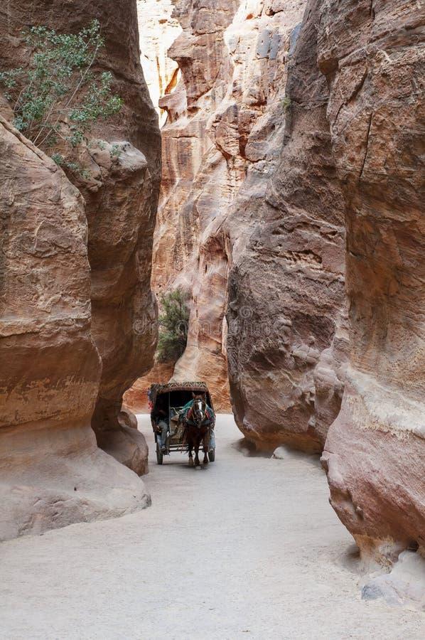 Toeristenvervoer dichtbij ingang aan Petra, Jordanië stock afbeelding