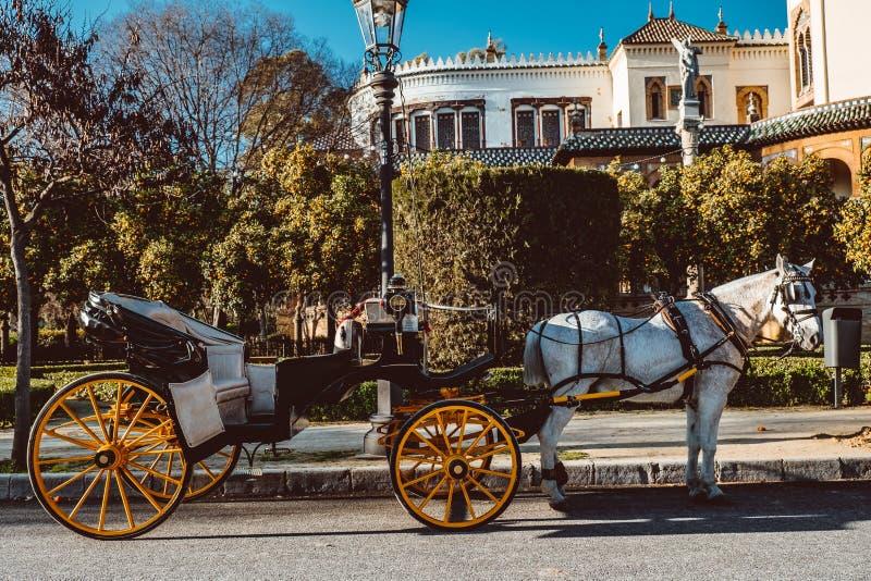 Toeristisch paardvervoer en de centrale bouw in Plaza DE Espana Sevilla, Spanje royalty-vrije stock foto