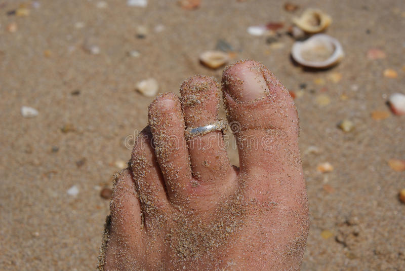 Toes on the beach. Toes with toering on a beach with shells stock photography
