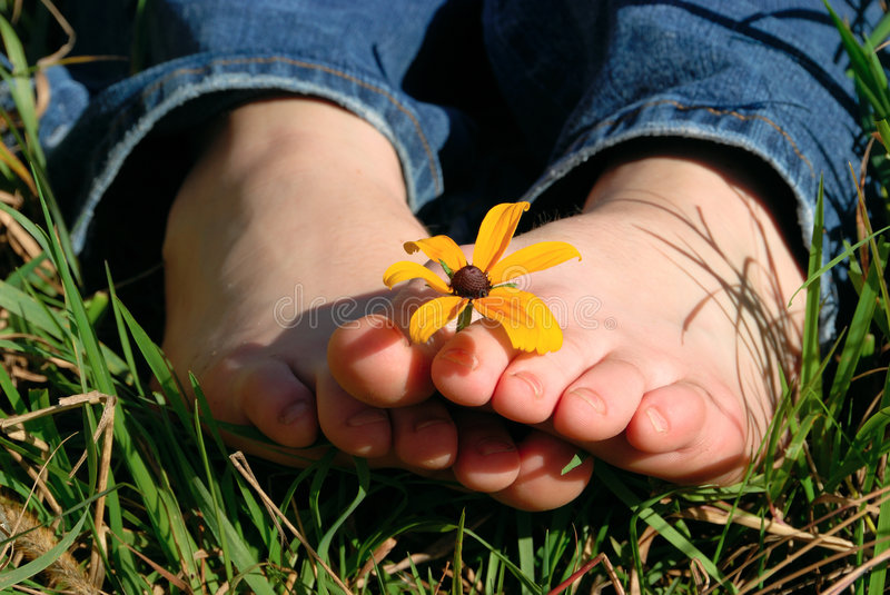 Download Toes Holding Flower Royalty Free Stock Photo - Image: 1720315