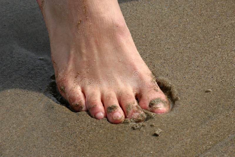 Toes in Sand royalty free stock photo