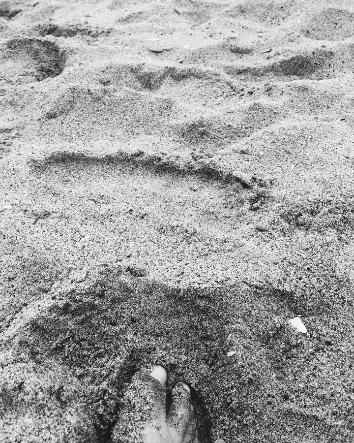Toes in the Sand royalty free stock image