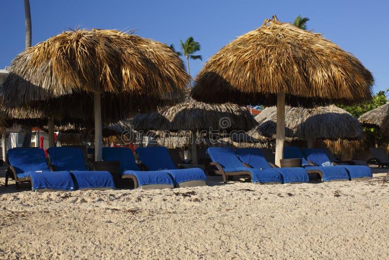 Toevlucht zandig strand, palmparaplu's en sunbeds stock foto's
