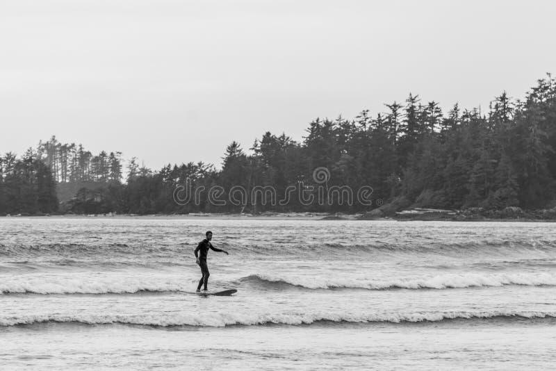 TOFINO, КАНАДА - 2-ое сентября 2018: всадник серфера или волны на surfboard на предпосылке океана стоковая фотография rf