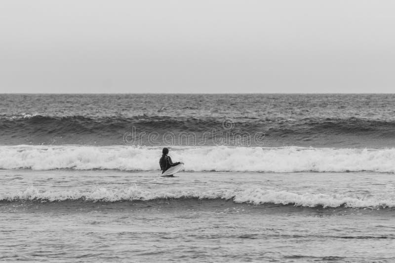 TOFINO, КАНАДА - 2-ое сентября 2018: всадник серфера или волны держа surfboard на предпосылке океана стоковое изображение rf