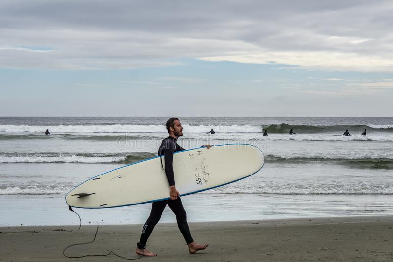 TOFINO, CANADA - September 2, 2018: surfer or wave rider holding the surfboard on the background of ocean stock photo