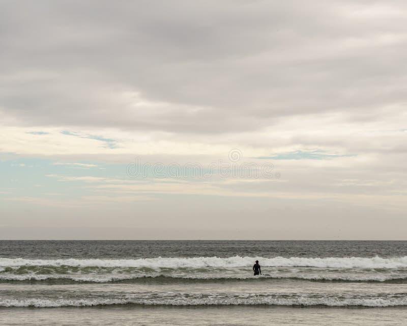 TOFINO, KANADA - 2. September 2018: Surfer- oder Wellenreiter, der das Surfbrett auf dem Hintergrund von Ozean hält stockfotografie