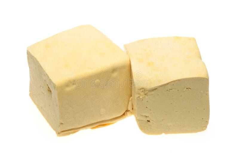 tofu royaltyfri bild