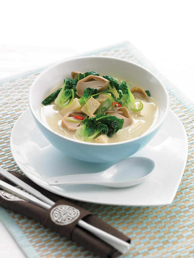 Tofu bok choy coconut soup. With Asian mushrooms and green onion stock image