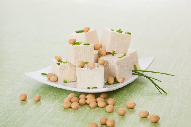 Tofu e feijões de soja imagem de stock royalty free