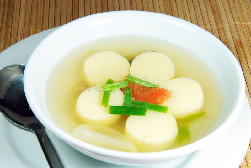 Tofu polewka. obraz stock