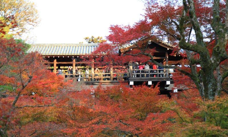 Tofukuji świątynia: KYOTO - 25 2017 Nov: Tłoczy się gromadzenie się przy Tofukuj obraz stock