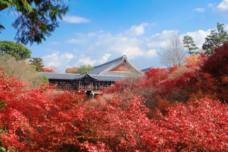 Tofukuji-Tempel mit Rotahornblättern in der Herbstsaison stockfotos