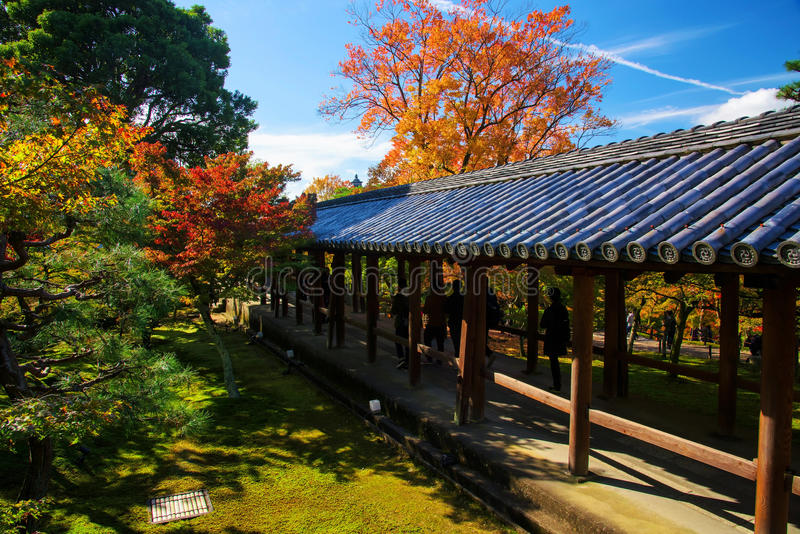 Tofukuji temple, walk trail with fall foliage royalty free stock image