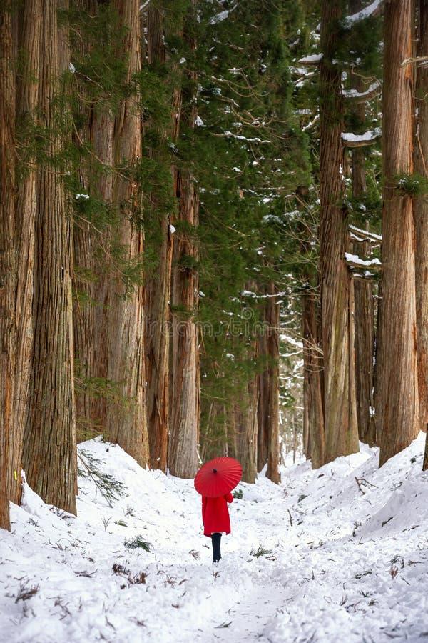 Togakushi Shrine, a girl holding a red umbrella in the pine forest of the temple. The path to Togakushi Shrine Okusha Nagano. Japan. Feb 3, 2019 stock image