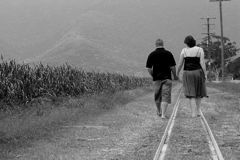 Download Together #2 stock photo. Image of sugarcane, telegraph - 1103538