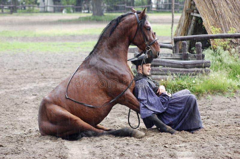 Togheter de descanso do cavaleiro e do cavalo imagem de stock