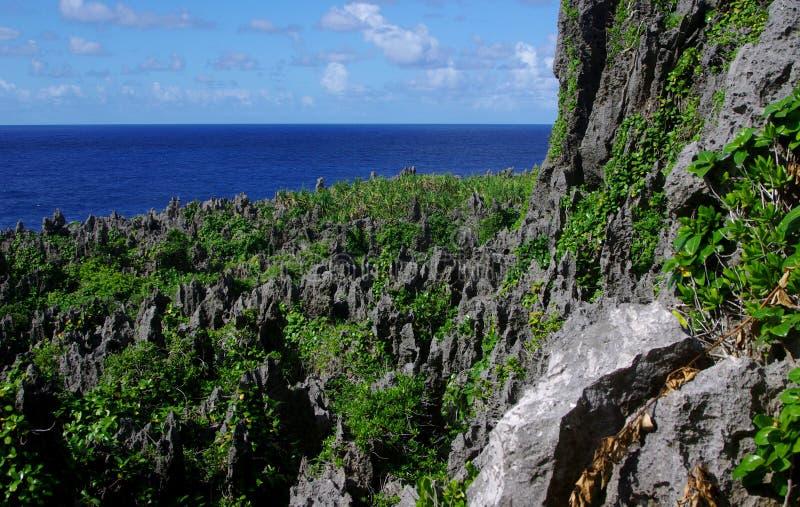 Togo Chasm, Niue foto de stock royalty free