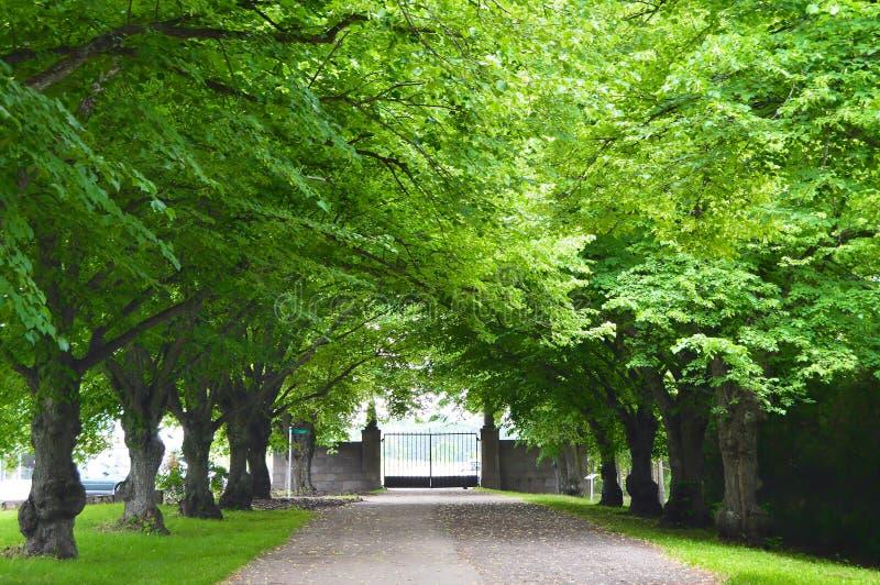 Toila Park in Estonia stock image