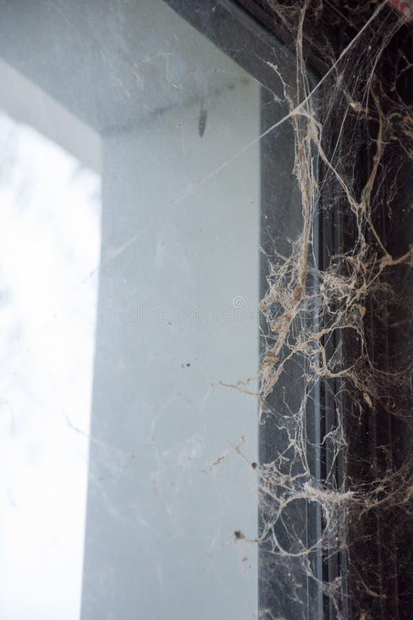 Toile d'araignée d'horreur de triangle dans la Chambre photographie stock libre de droits