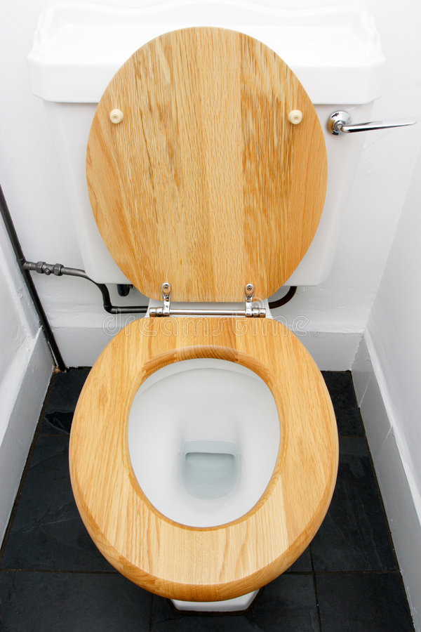 Free Toilet Royalty Free Stock Image - 1306446