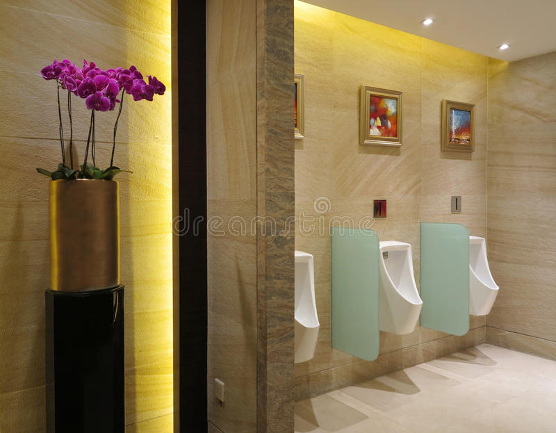 Download Toilet Royalty Free Stock Images - Image: 25942989