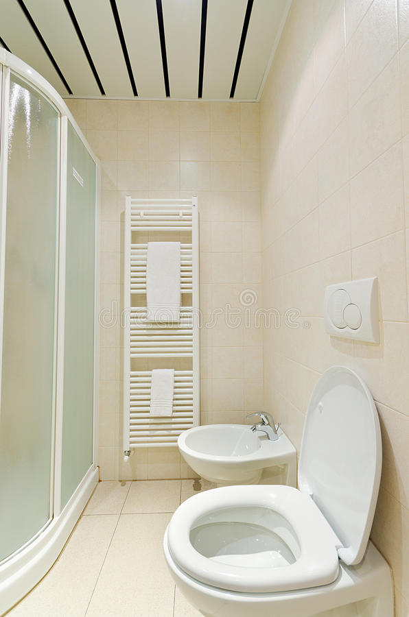 Download Toilet in the  bathroom stock photo. Image of decoration - 27047478