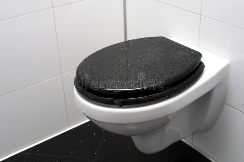 Download Toilet stock photo. Image of ecological, diamond, washroom - 30362642