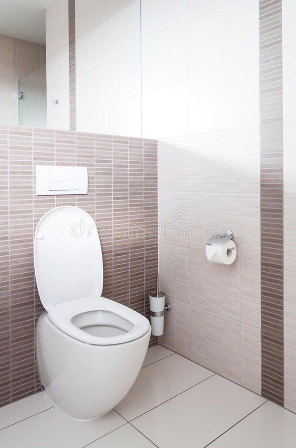 Free Toilet In A Bathroom Royalty Free Stock Photos - 29220768