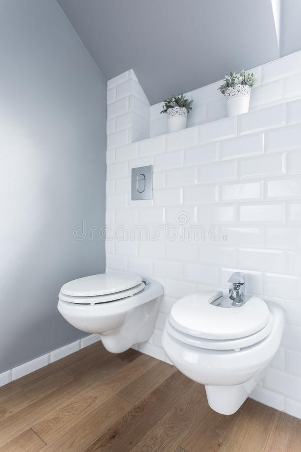 Toilet met houten vloer stock foto afbeelding 55580582 - Decoratie toilet ontwerp ...