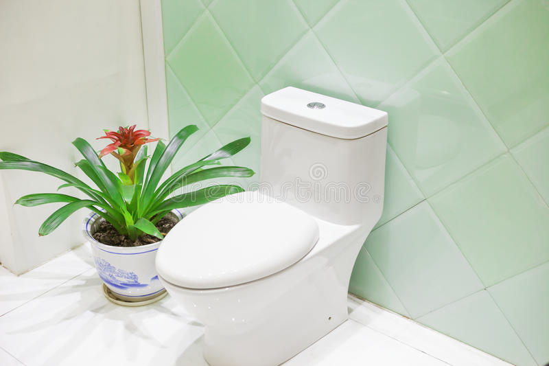 Toilet. Modern toilet with a pot of flower royalty free stock photos