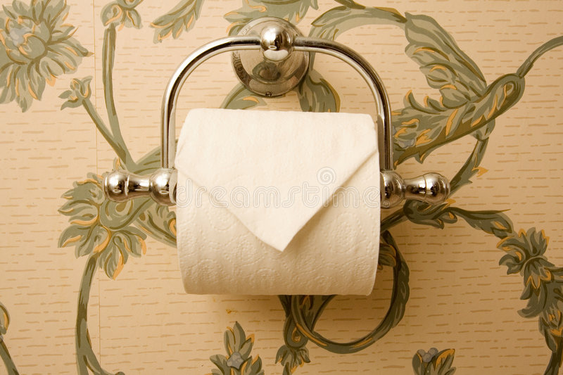 Download Toilet Paper Holder stock image. Image of accommodation - 3733241