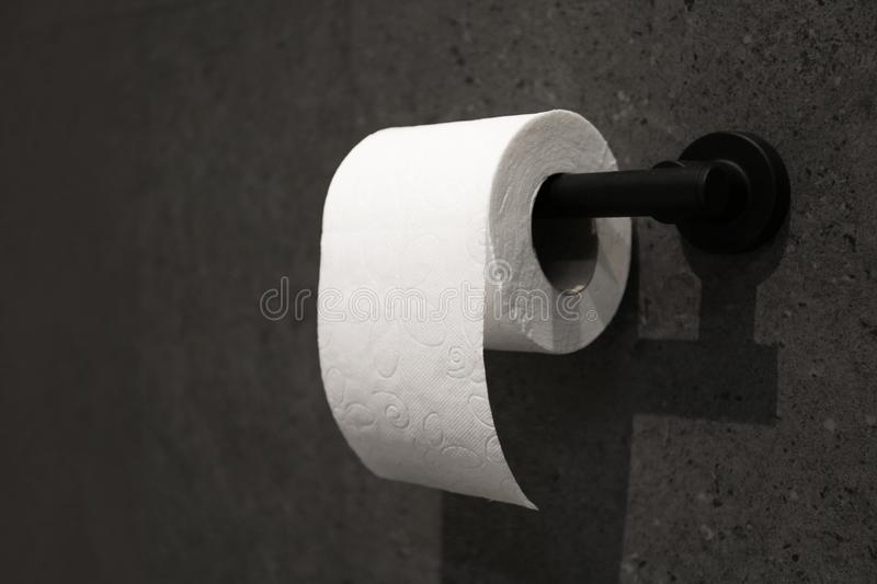 Toilet paper holder with roll mounted. On dark wall royalty free stock image
