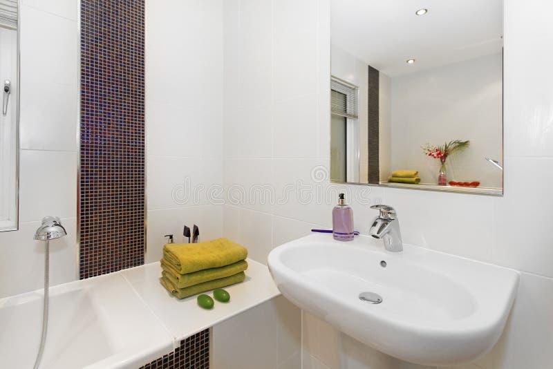 Download Toilette immagine stock. Immagine di bathtub, bacino - 30827031