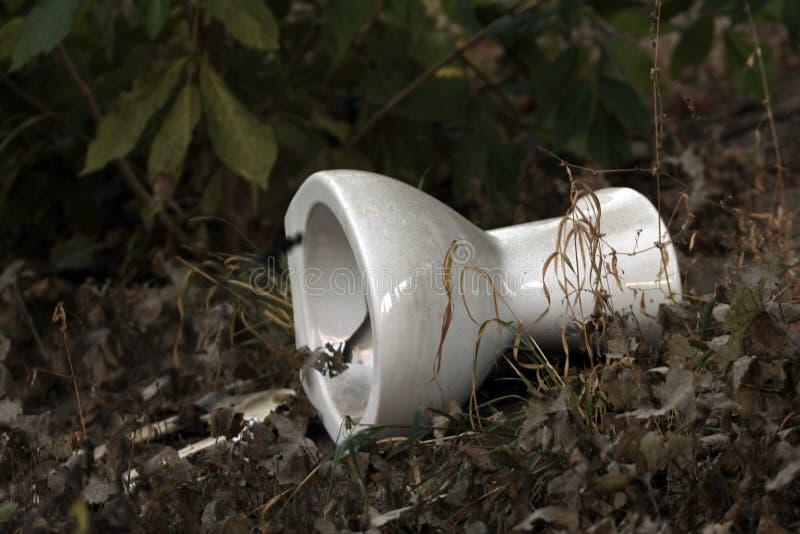Toilette, arricciamenti ambientali sul bordo della strada fotografia stock